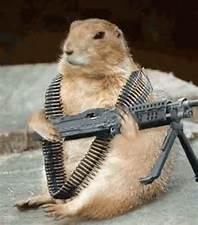 groundhog day 3