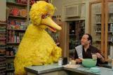big-bird